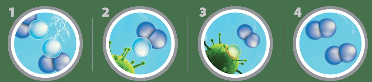 Ozon Desinfektion